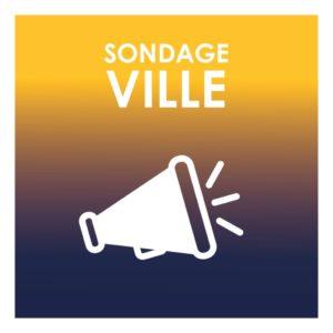 thumbnail of VIGNETTE_SITE_SONDAGE
